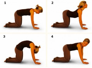 упражнения на четвереньках